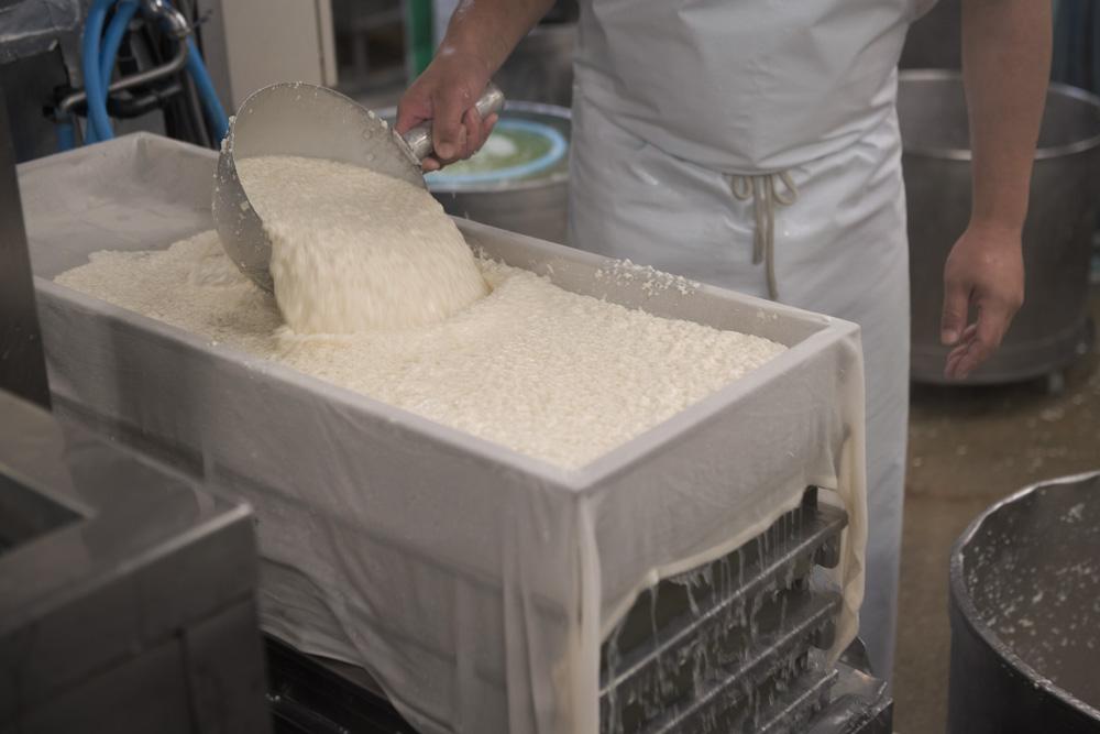 揚げ専用の豆腐